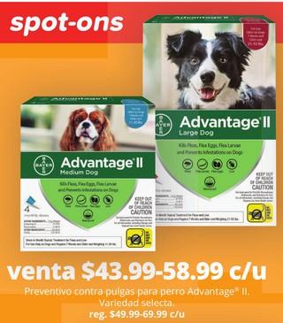 Preventino contra Pulgas para Perro