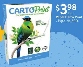 Papel Carto Print