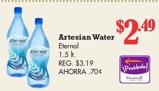 Artesian Water Eternal